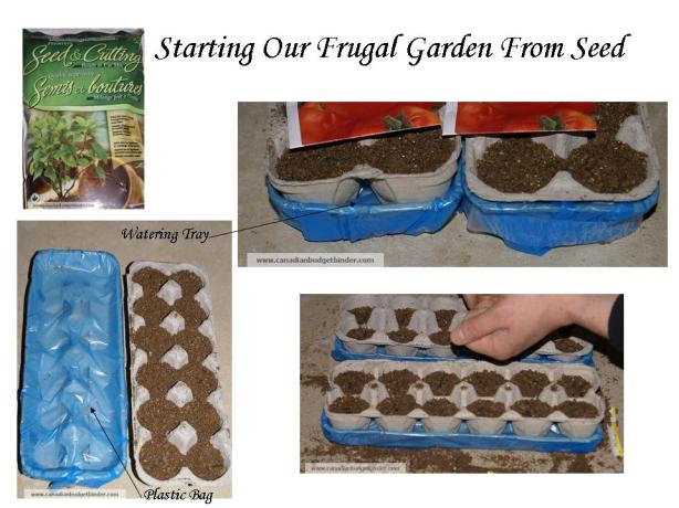 Starting Our Frugal Garden From Seed