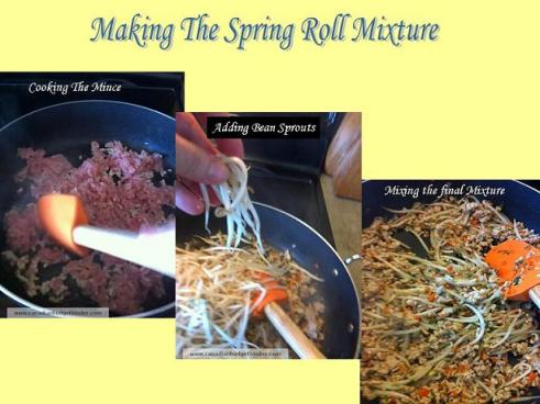 Making The Spring Roll Mixture