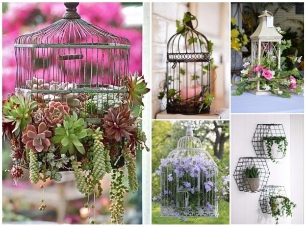decorar jaulas con plantas naturales