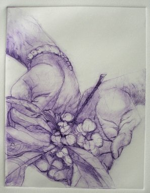 Dry-point print by Pam Bleakley