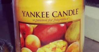 Yankee-Mango-Peach-Salsa-Scented-Candle-Review-2