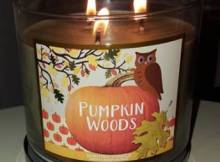 bath-body-works-pumpkin-woods-scented-candle-2