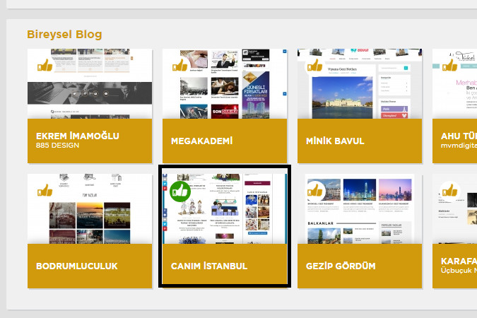 Screenshot of Altin Orumcek Bireysel blog category