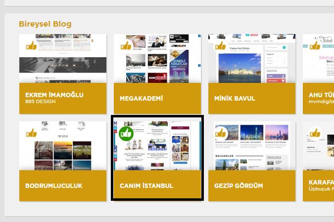 Screenshot of Altin Orumcek Bireysel blog category