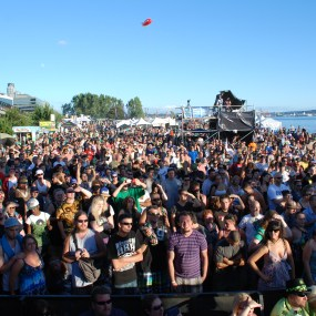 The Seattle Hempfest main stage crowd enjoying Everlast.