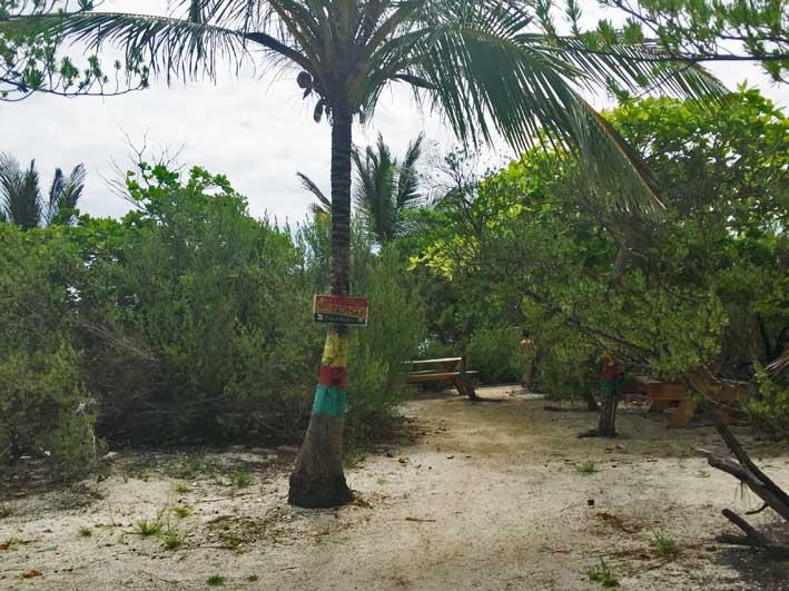 Como-e-o-passeio-a-Cayo-Bolivar-entrada2