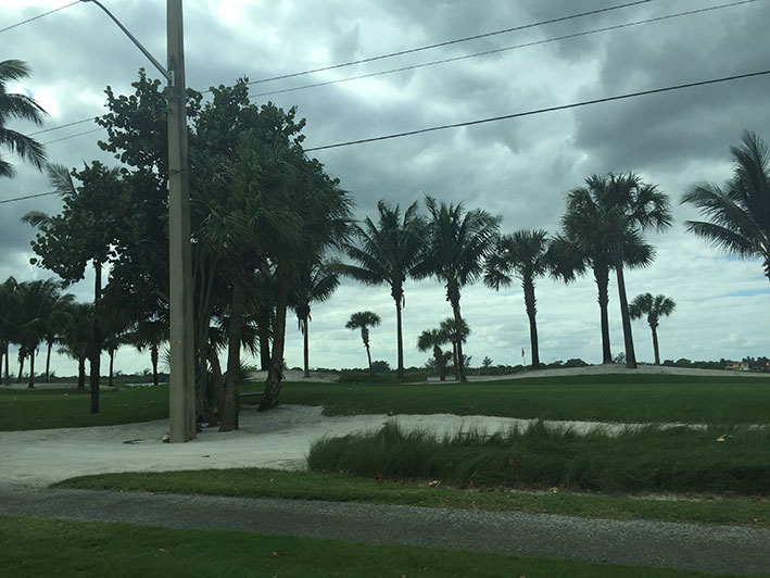 Fort-Lauderdale-bate-volta30