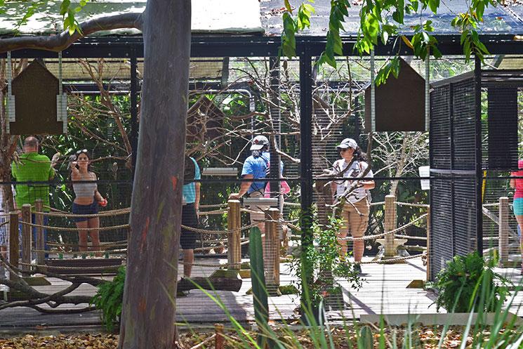 zoo-de-miami-5