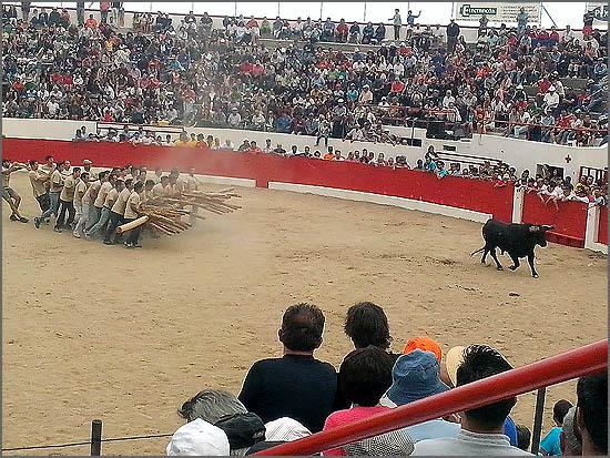 Festival constrangedor - o curro foi um fiasco