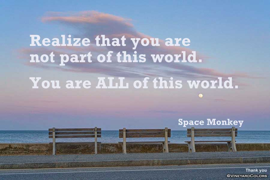 Realize that you are not part of this world. You are ALL of this world.