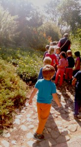 Kirstenbosch-Garden-exhibition-william-sweetlove