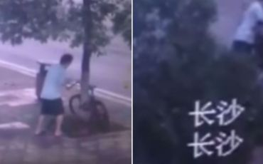 TEASER-Surveillance-camera-captures-man-chopping-down-tree-to-steal-bike