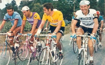 gimondi-poulidor-merckx-pingeon-color