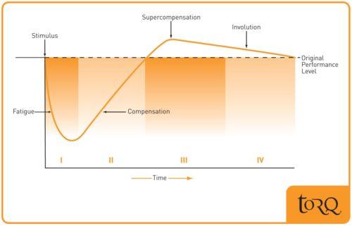 Adaptation-curve-500x321