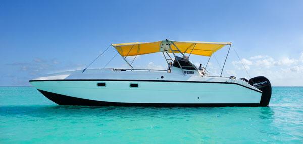 boat-power-cat-27-captainjo-boat-charter