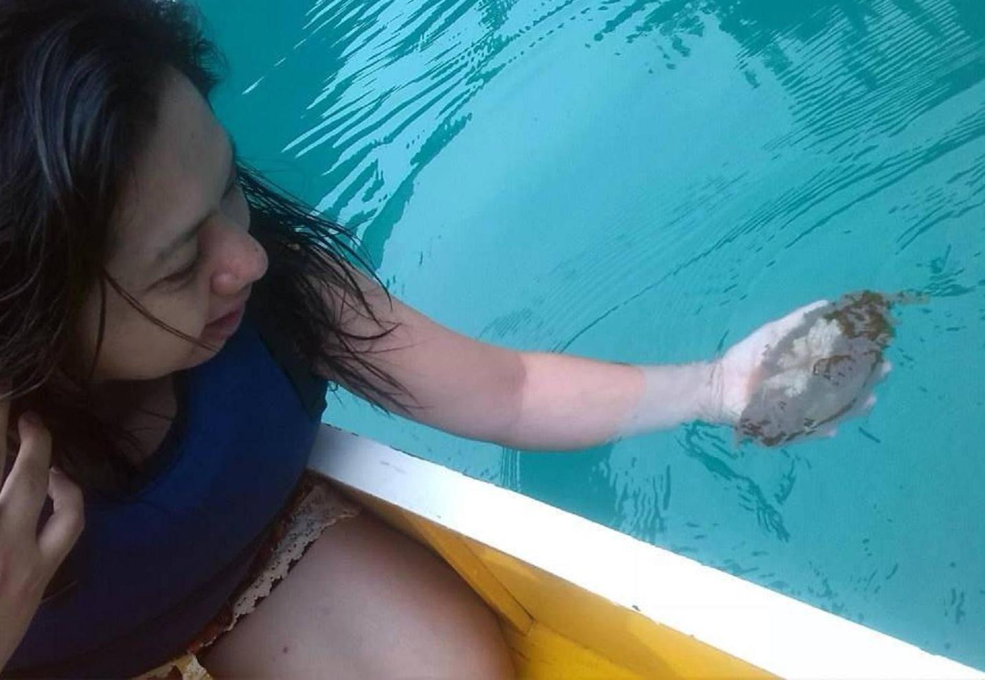 jellyfish lagoon, bucas grande islands