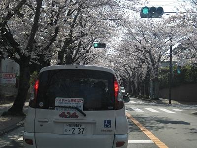 s-IMG_4884.jpg