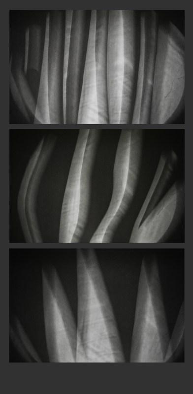 2012-09-10-Fototriss