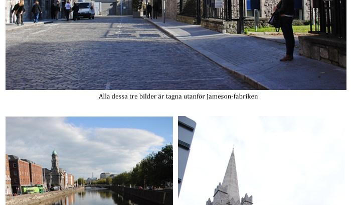 Dublin-kollage