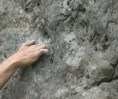hand clinging to rock