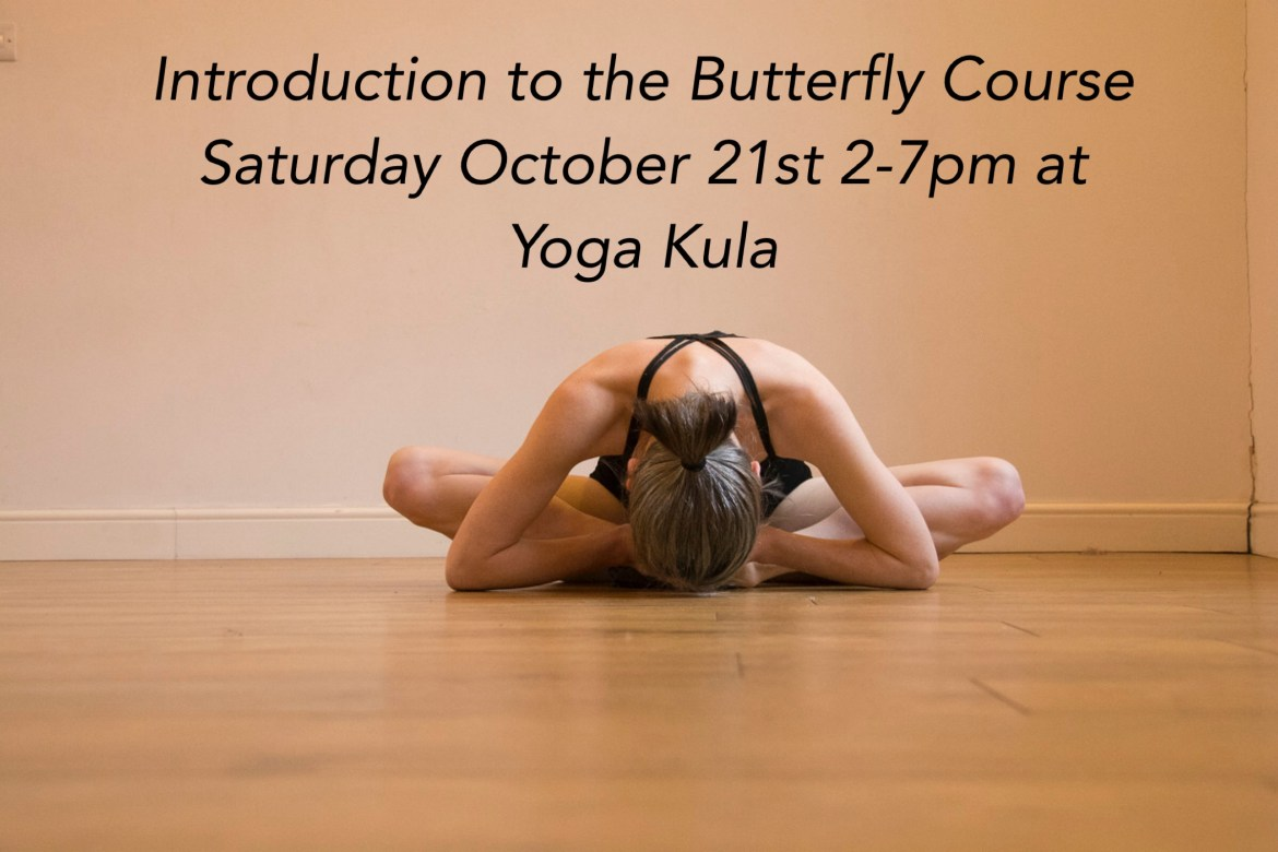 Butterfly Intro Day Bookings