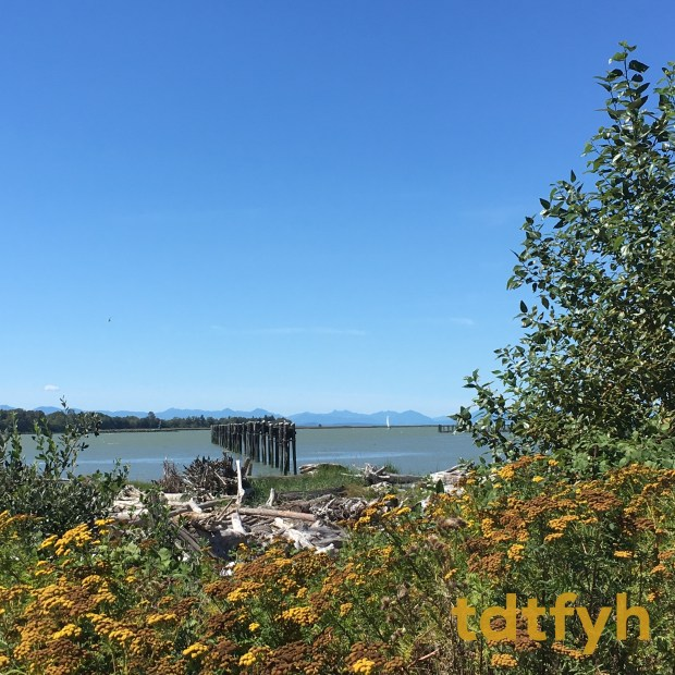 44. Steveston Greenways