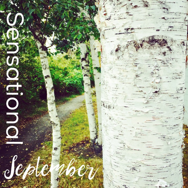 Things we'll do this month: September