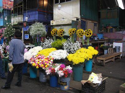 800px-FlowerStallJamaicaMarketDF