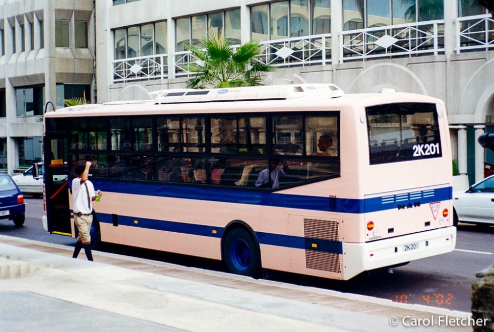 Bermuda: Pink buses & those shorts!