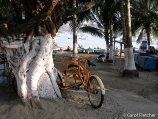Bicycle at the beach