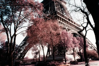 Paris-eiffel-tower-spring