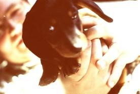 puppy!03