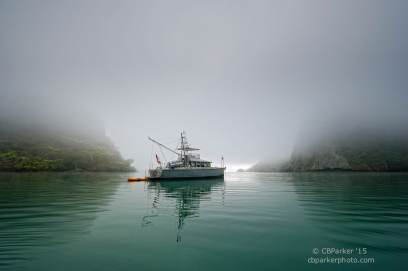 Misty Anchorage - Whangaroa, New Zealand 2012
