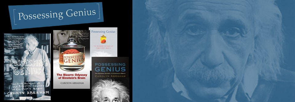 Possessing Genius: The Bizarre Odyssey of Einstein's Brain
