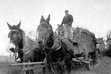 Steel Buildings Marion Cty, Iowa Farme w mule drawn_wagon, 1920s