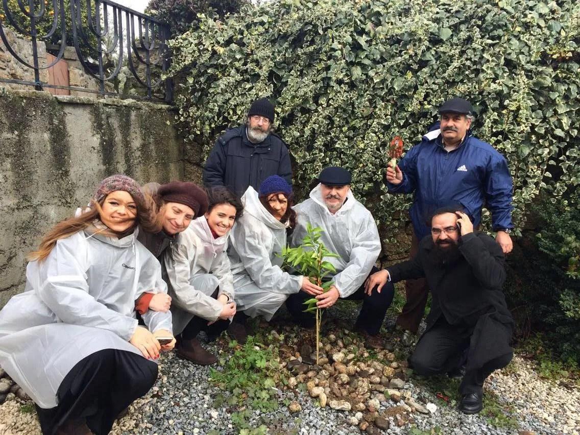 Plantando árvores em honra a Tu B'Shvat