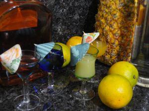 Tutoriais | Guarda Chuvas para drinks