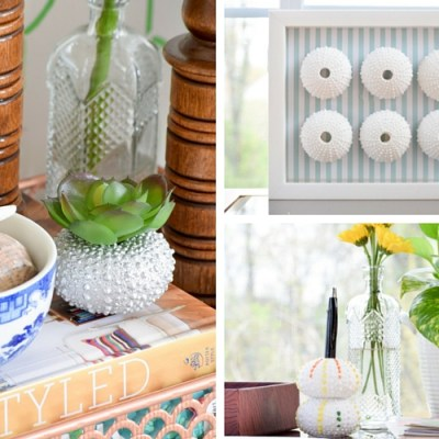 3 Coastal DIY Projects with 1 Box of Vase Filler