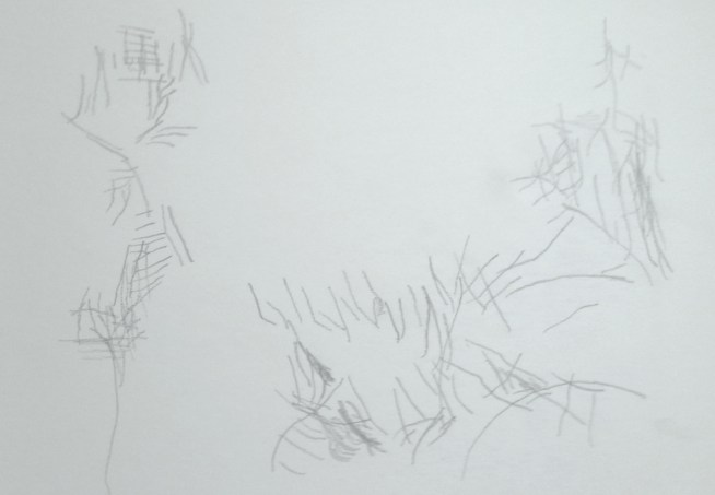 Pure Contour Drawing