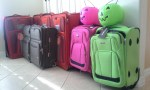 Shopping for Luggage