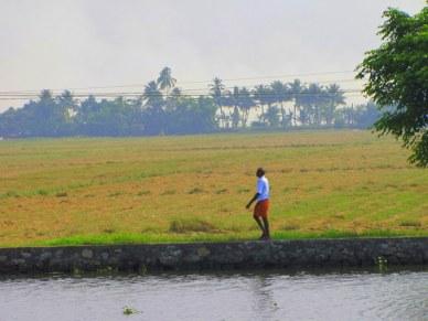 backwaters do kerala