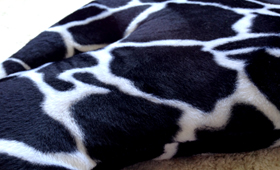 Black Giraffe Cat Bed