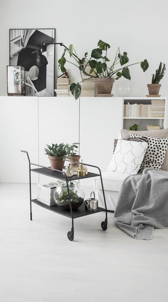 display plants on a bar cart