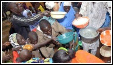 Humanitarian crisis in northern Nigeria
