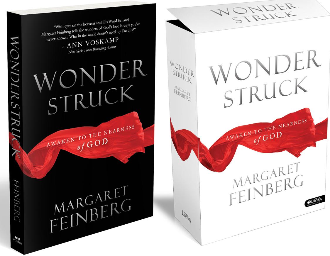 Blog Post Wonderstruck Cover Art