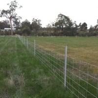 Sheep Fence Finished
