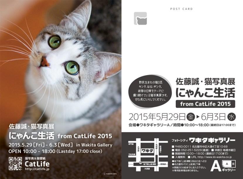 にゃんこ生活201505DM
