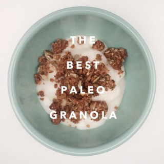 The Best Paleo Granola