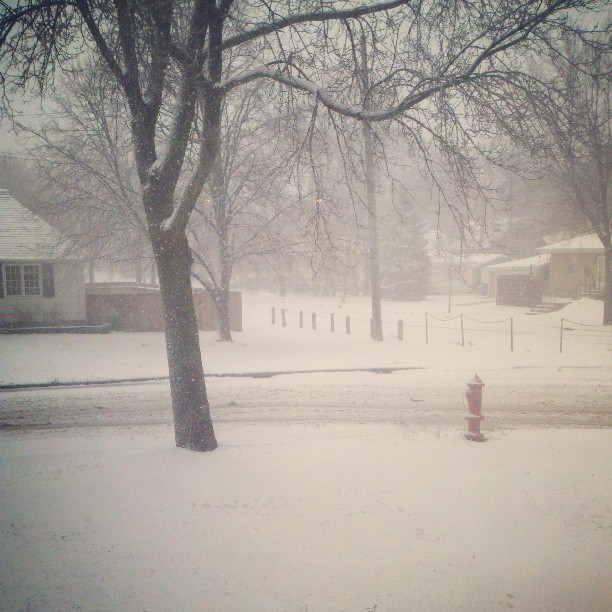 Late April Minnesota Snow