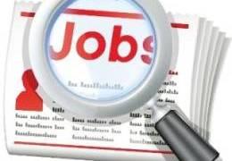 JobsDaily-20.jpg